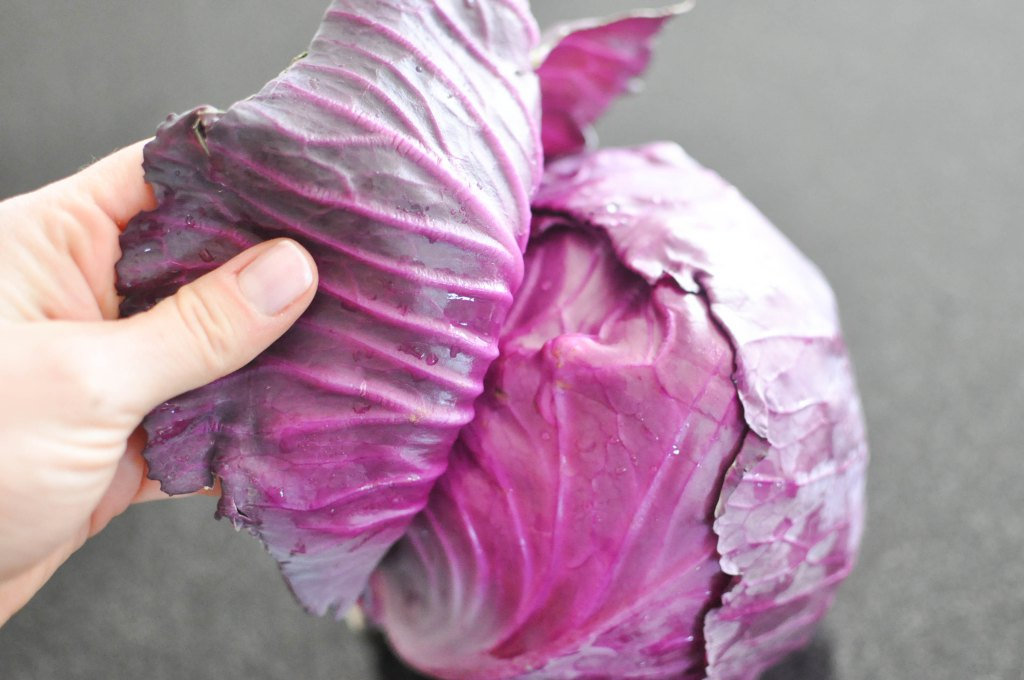 Gather's Roasted Green and Purple Cabbage | Fed+Fit-10