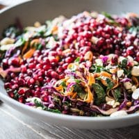 Winter Veggie Coleslaw