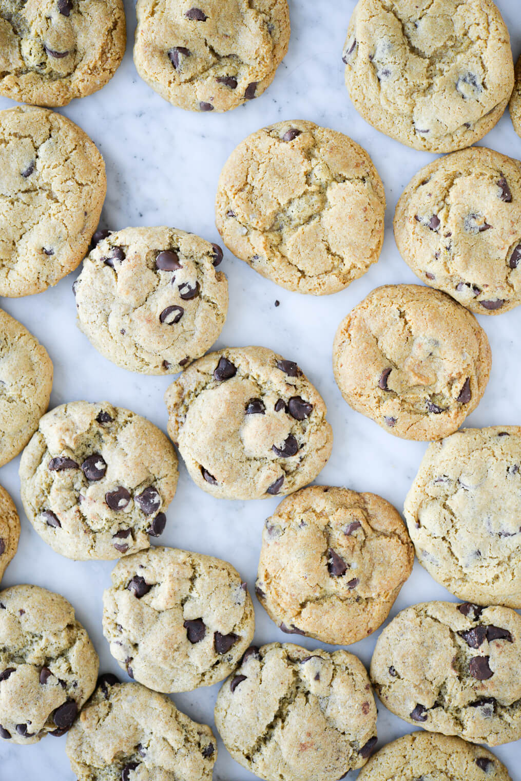 top view of chocolate chip cookies made with different egg replacers