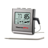 digital thermometer with probe
