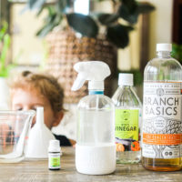 all of the ingredients for a homemade streak free cleaner lined up on a dining room table