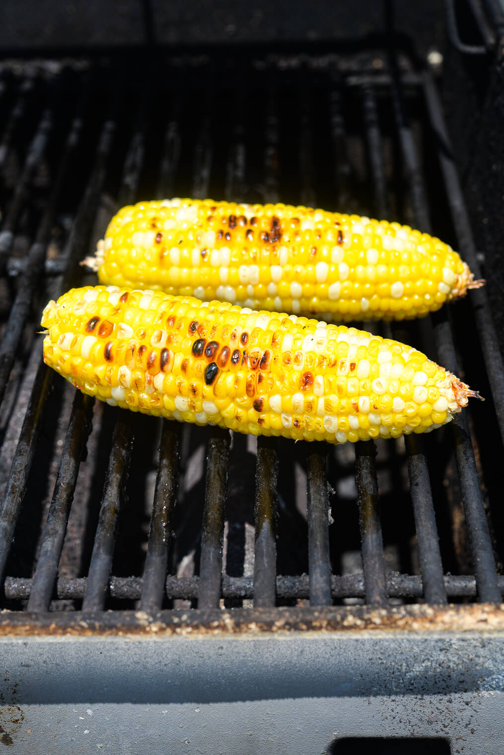 2 husked cobs of corn with grill marks on a the grates of a gas grill